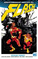 Znovuzrození hrdinů DC - Flash 2: Rychlost temnoty