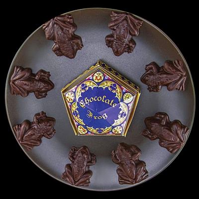 Harry Potter - Formičky na čokoládové žabky